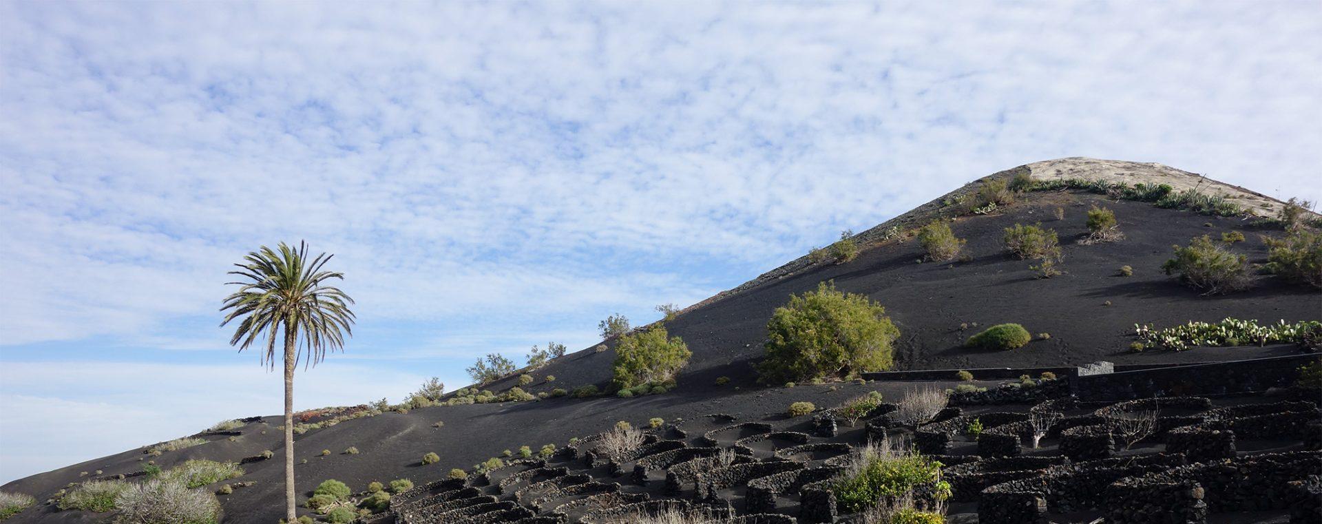 Subiendo volcanes